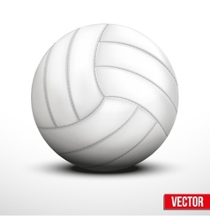 Volleyball in traditional one color on white vector image