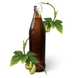 a bottle of beer and hops vector image