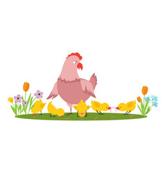 cartoon character hen and little chickens vector image