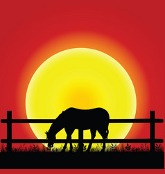 Horse silhouette in nature vector