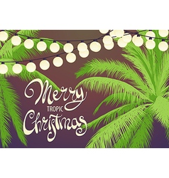 Original Christmas palm trees vector image