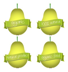 sweet pears with organic and natural banners eps10 vector image