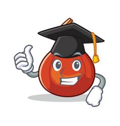 Graduation red kuri squash character cartoon vector