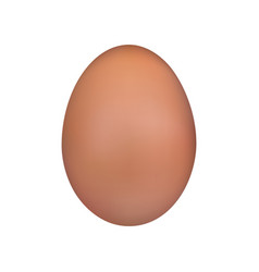brown egg chicken egg easter symbol isolated vector image