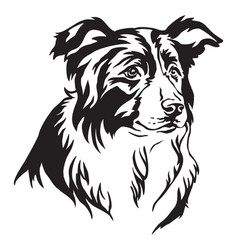 Decorative portrait of border collie vector