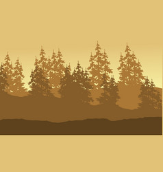 Forest spruce scenery silhouette collection vector