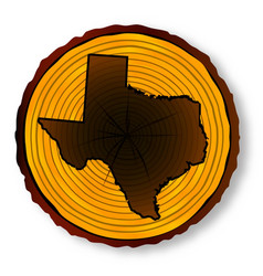 texas map on timber end section vector image