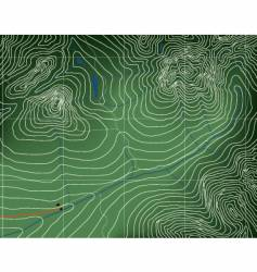topographic map vector image vector image