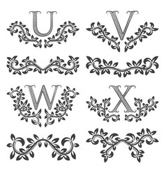 design ornamental elements and monograms set vector image