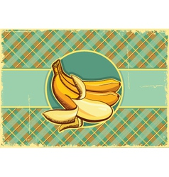 Bananas label Vintage fruits vector image