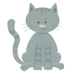 cute domestic cat cartoon animal character vector image
