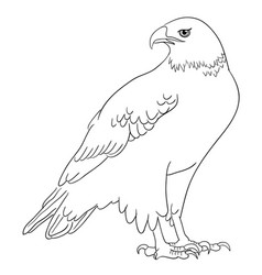 Eagle line art 02 vector