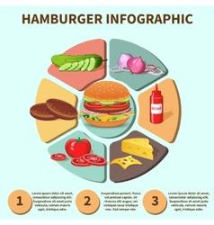 Hamburger sandwich infographic vector image