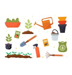 set gardening tools seeds and seedlings vector image