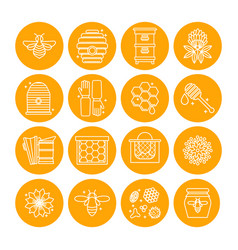 set of icons of beekeeping honey apiary vector image