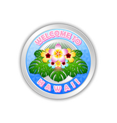 silver or platinum welcome to hawaii badge in vector image