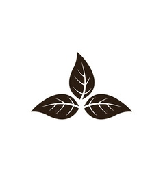 Tobacco-leaves vector