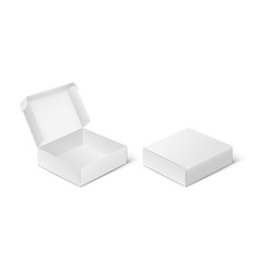 Two empty closed and open packing boxes box vector