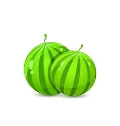 Two Juicy Whole Watermelons vector image vector image