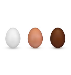 white and brown and chocolate easter egg element vector image
