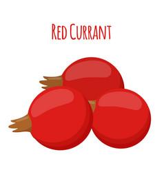 fresh berries red currant flat vegetarian food vector image