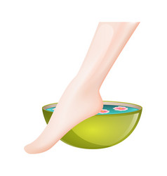 pedicure spa female feet vector image
