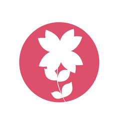beauty flower natural icon vector image