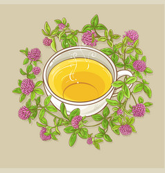cup of clover tea vector image