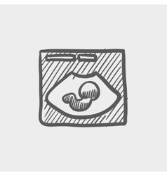 Fetal ultrasound sketch icon vector