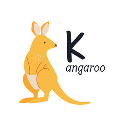 funny image a kangaroo and a letter k zoo vector image