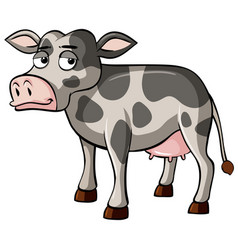 Gray cow with sleepy face vector