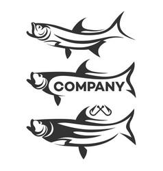 modern tarpon logo vector image