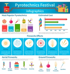 Pyrotechnics Festival Flat Infographics vector image