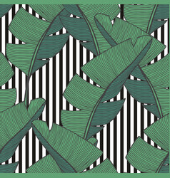 Seamless pattern with banana leaves for design vector