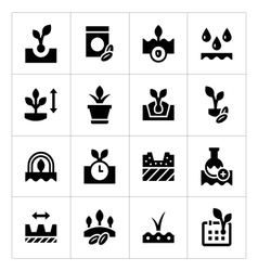 Set icons seed and seedling vector