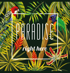 slogan paradise righ here flowers leaves parrot vector image