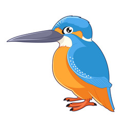 cartoon smiling kingfisher vector image