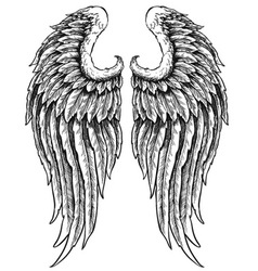 hand drawn angel wings vector image vector image