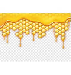 background with honeycombs sweet honey drops on vector image