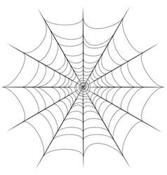 Decorative spider web vector