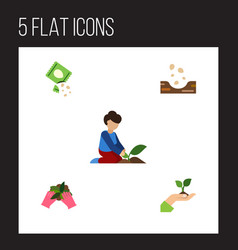 Flat icon seed set of packet florist seed and vector