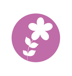 flower botanical natural icon vector image