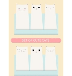 Kittens pocket greeting birthday or shower card vector