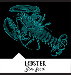 Lobster for a seafood menu vector