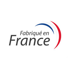 Made in france simple symbol with french tricolor vector