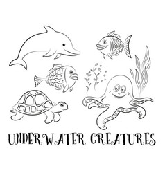sea creatures contours vector image
