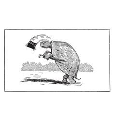 Tortoise with top hat umbrella vintage vector