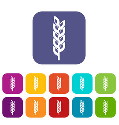 Grain spike icons set flat vector