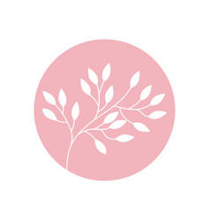 flower branch natural icon vector image