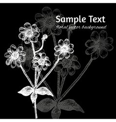 Black and white background with hand drawn flowers vector image